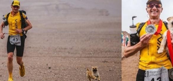 Filhote chinês de cão de rua seguiu corredor em maratona exaustiva de 80 quilômetros