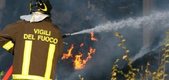 Pompierii au intervenit pentru a stinge focul