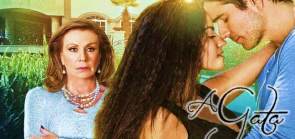 Paulo aceita se casar com Mônica na novela 'A gata'