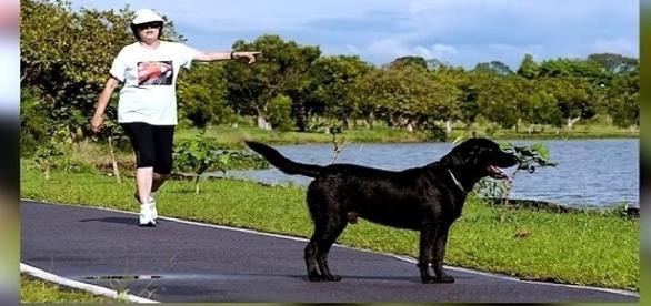 Cachorro de Dilma Rousseff não embarca para Porto Alegre e desaparece