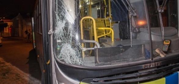 Ônibus acabou tendo seu vidro da frente trincado após atropelamento