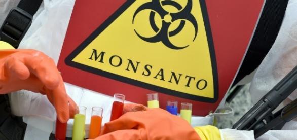 Bayer-Monsanto, une menace pour la santé publique? | Slate.fr - slate.fr