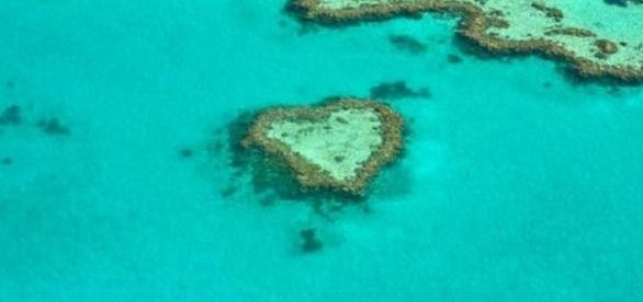 CORAL mission will study Australia's bleached and distressed Great Barrier Reef [Image: Pixabay.com]