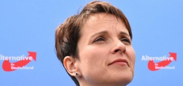 L'Allemagne face à la montée du populisme - SudOuest.fr - sudouest.fr