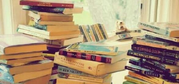 Qual é o livro perfeito para cada signo