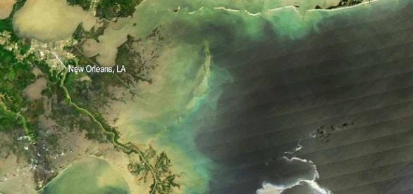 Gulf Coast oil spill disaster has global consequences (Includes ... - digitaljournal.com
