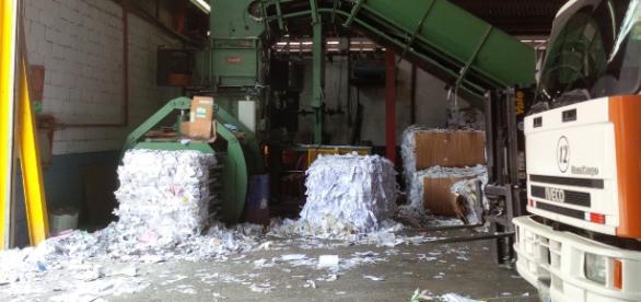 Reciclaje de papel en Palo Verde, Caracas
