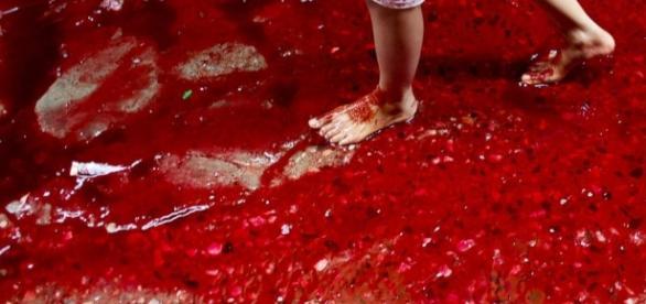 Heavy Rains and Eid Animal Sacrifices Create Rivers of Blood in ... - go.com