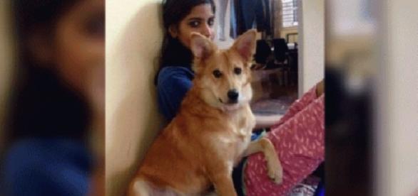 Ella ahora cuidado de su perra y dejo en el pasado a su expareja. (Foto: Internet)