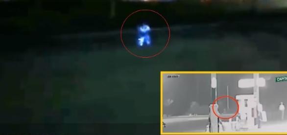 Según los testigos, el raro ser presentaba un intenso brillo similar al que producen las medusas