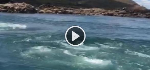 Vídeo mostra os fortes rodamoinhos no local em que Domingos Montagner morreu