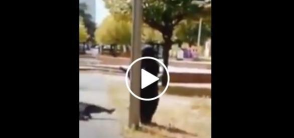 Kobieta ubrana w burkę niechcący zaliczyła czołówkę ze słupem.