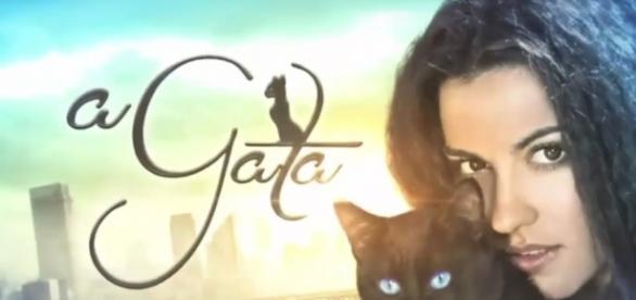 'A Gata': confira o resumo da novela em 5 de setembro, segunda-feira