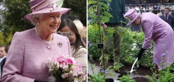 Rainha Elizabeth em seu jardim