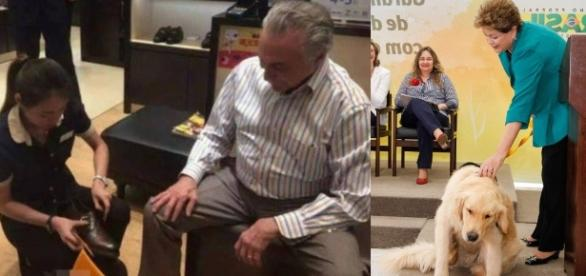 Temer compra cachorro robô na China