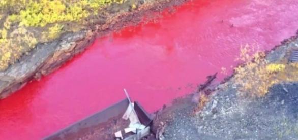 Apele unui râu din Siberia, în Rusia, au căpătat peste noapte culoarea sângelui