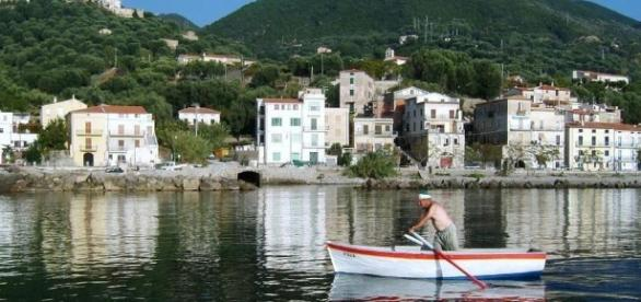 Stop alla sagra del pesce a Pisciotta «Carenze igienico-sanitarie ... - ilmattino.it