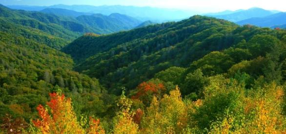 Welcoming Autumn to the Smoky Mountains - visitmysmokies.com
