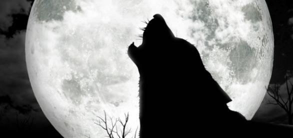 Are you superstitious about Friday the 13th? - newsprepper.com