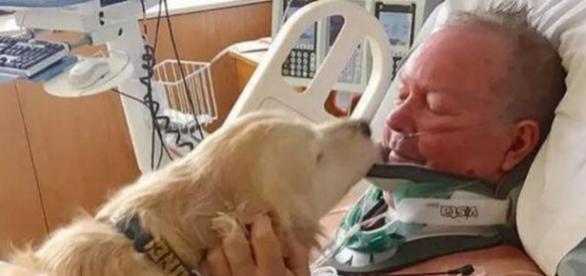 Bob a fost salvat de câinele său Kelsey, care l-a ținut în viață încălzindu-l după ce acesta a căzut în zăpadă - Foto: Spitalul McLaren Northern