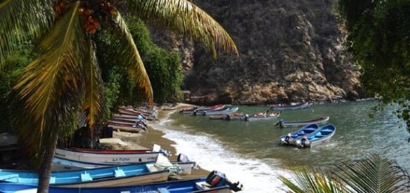 Choroní, región del estado Aragua en Venezuela.
