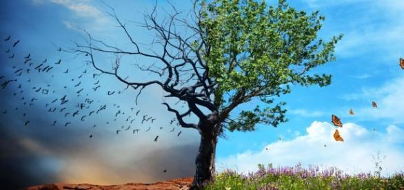 Mudança de vida: como mudar de vida em quatro passos simples