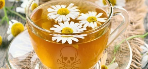 Tisanes et thés toxiques épinglés par différentes études - Montage photo SBS