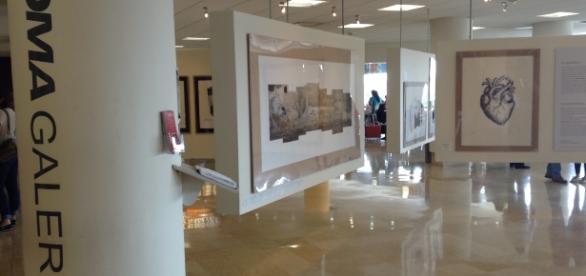 Con audaz obra de Yola López la Galería OMA entretiene a los viajantes en Sinaloa.
