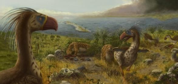 The terror, Prehistoric and Birds on Pinterest - pinterest.com