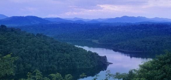Vista da lagoa Dom Helvécio, no Parque Estadual do Rio Doce, MG