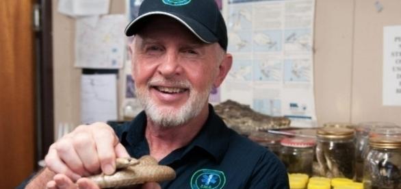 Dr. Bob hält die giftige Braunschlange aus dem Camp / Foto: RTL, Stefan Menne