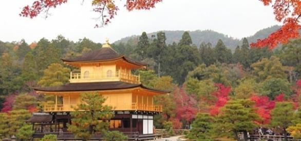 Japão oferece bolsas de estudo para professores do ensino básico