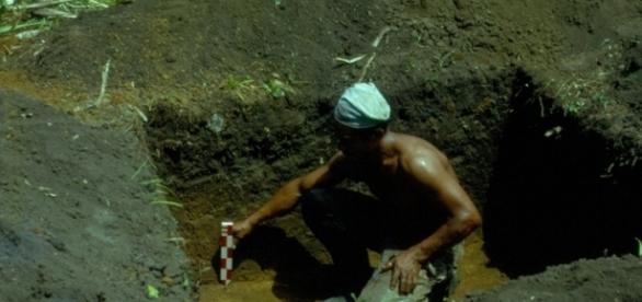 Hombre del amazonas buscando terra petra