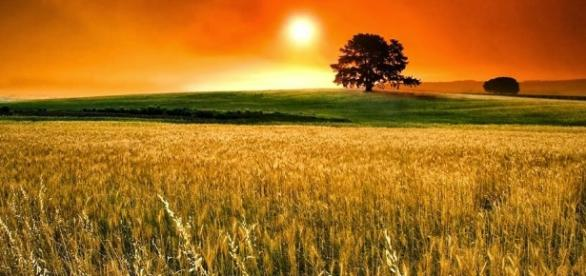 A importância da filosofia e do filosofar na sociedade atual