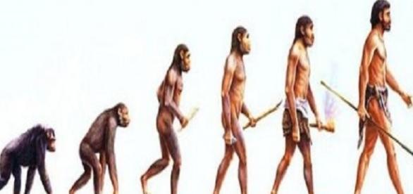 É possível descobrir os nossos antepassados mais distantes