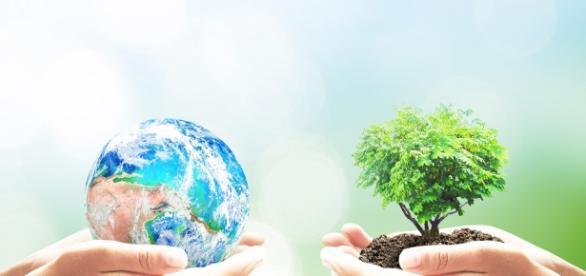 10 livros para quem busca uma vida mais sustentável - Guia da Semana - com.br