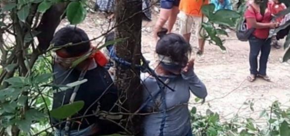 Mulher é presa em árvore e torturada - Google