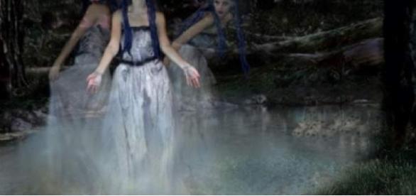Pădurea Hoia-Baciu, un mister pentru oamenii de știință