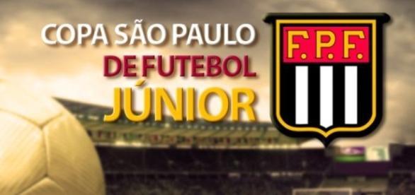 Palmeiras x Ferroviária: assista ao jogo ao vivo