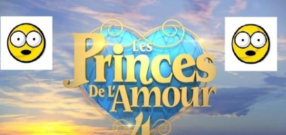 Une nouveauté de taille dans la saison 5 des Princes de l'Amour