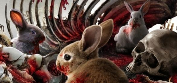 Tony Jopia is the creator of horror-comedy film 'Cute Little Buggers'. / Photo via Clint Morris, October Coast PR, used with permission.