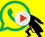 WhatsApp 'se ne frega' della vostra privacy