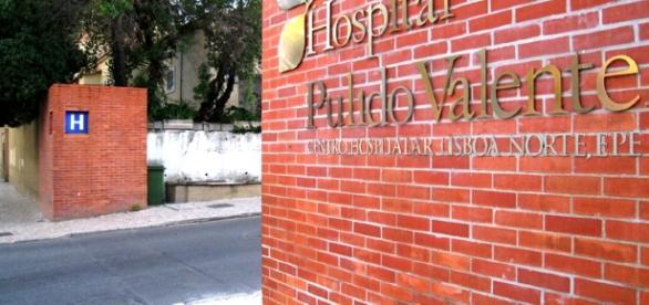 Pedro Pulido Valente | Celebrities lists. - waytofamous.com