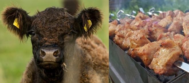 Oye vegano, cómete esa carne asada y deja de imponer tus ideas