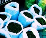 Ragusa, scoperti 300 chili di marijuana nascosti in un camper.