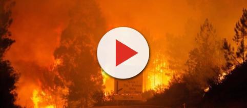 El incendio forestal que arrasa el centro de Portugal deja 62 ... - navarrainformacion.es