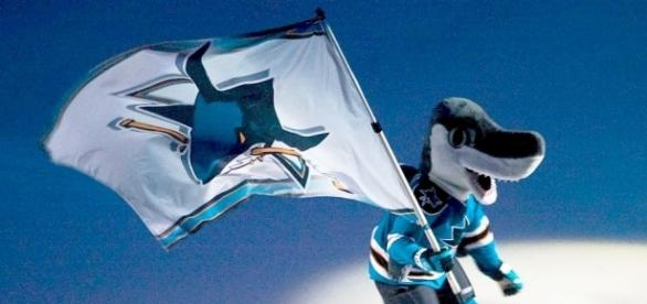 Sharks fly flag of victory, image credit: https://commons.wikimedia.org/wiki/File:Sharkie_with_flag.jpg