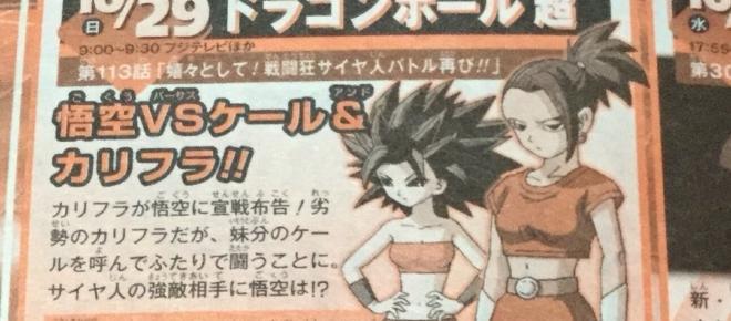 Dragon Ball Super: sinopsis del episodio 113