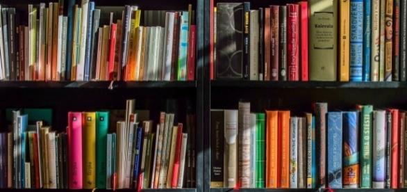 Libreria, come organizzarla? Pro e contro di ogni criterio