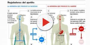Hormona que produce hambre (grelina) y hormona que produce saciedad (GLP, leptina)